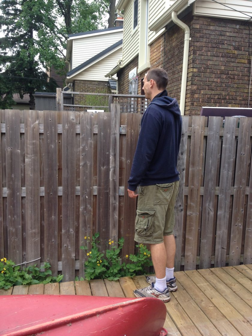 Tall People See Over the Neighbors Fence