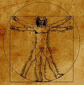 Proportional Definition for Human Height and Shape Vitruvian Man